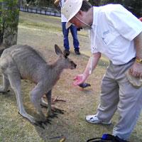 Brisbane, Australia 2